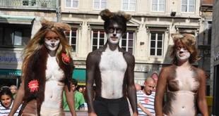 Elevage des 9000 visons à Emagny : Histoire d'une mobilisation