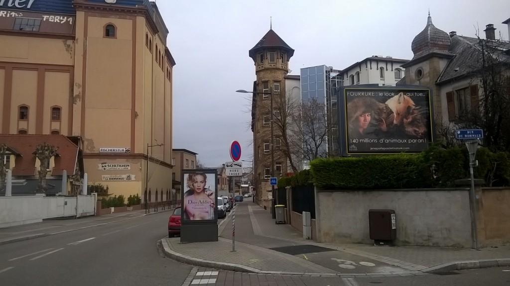 Nord Est de la France